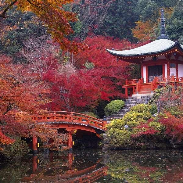 Japón Místico